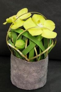 Art Floral 05